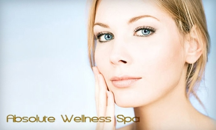Absolute Wellness Spa - Palm Beach Gardens: $65 for a Customized Deep-Pore Facial and Microdermabrasion Treatment at Absolute Wellness Spa ($135 Value)