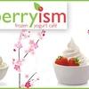 60% Off at Berryism Frozen Yogurt Café