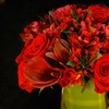Up to 61% Off of Floral Arrangments