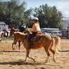 51% Off Children's Horse-Riding Camp