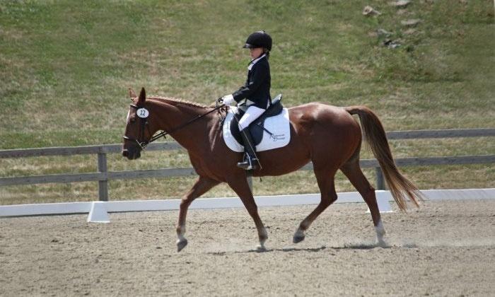 Reddemeade Equestrian Center - Ashton-Sandy Spring: Private Horseback-Riding Lesson for One, Two, or Three at Reddemeade Equestrian Center (Up to 51% Off)