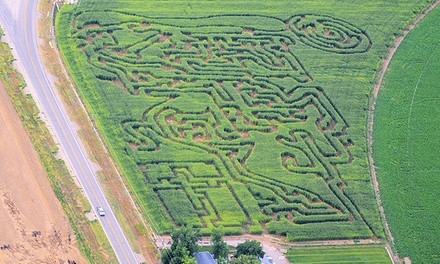 Corn-Maze Admission for Two or Four at Lungren Girls' Farm (50% Off)