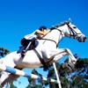 Up to Half Off Horseback-Riding Lessons