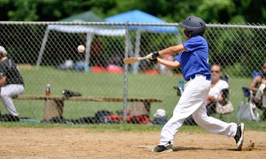 D1 Sports Academy: $39 for Four Weeks of Baseball Camp at D1 Sports Academy ($75 Value)