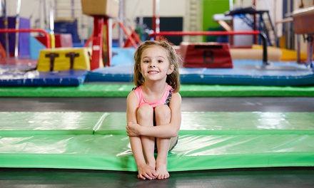 $79 for a 90-Minute Birthday Party for 10 at Altius Gymnastics & Cheer ($159 Value)