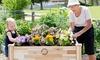 PatioCraft Cedar Planter: PatioCraft Elevated Cedar Planter