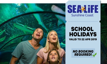SEA LIFE Sunshine Coast: Child $25.20 or Adult $36 Entry Up to $40 Value