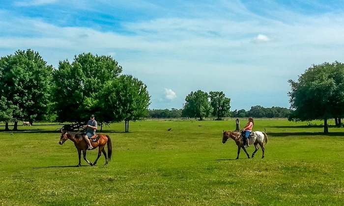 Myakka River Ranch - Myakka City: Two or Four 60-minute Trail Rides at Myakka River Ranch (Up to 59% Off)