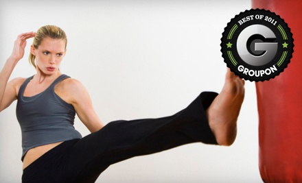 10 Kickboxing-Kettlebell Combo Classes (a $130 value) - Diekema Taekwondo in Saskatoon