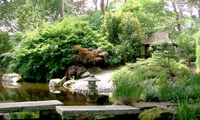 Pinetum Park Pine Lodge Gardens Saint Austell And