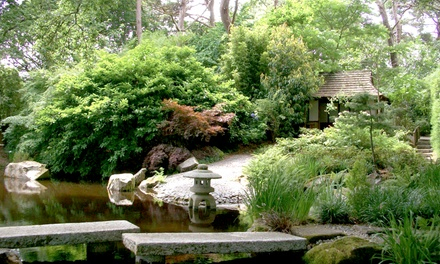 Pinetum Park & Pine Lodge Gardens