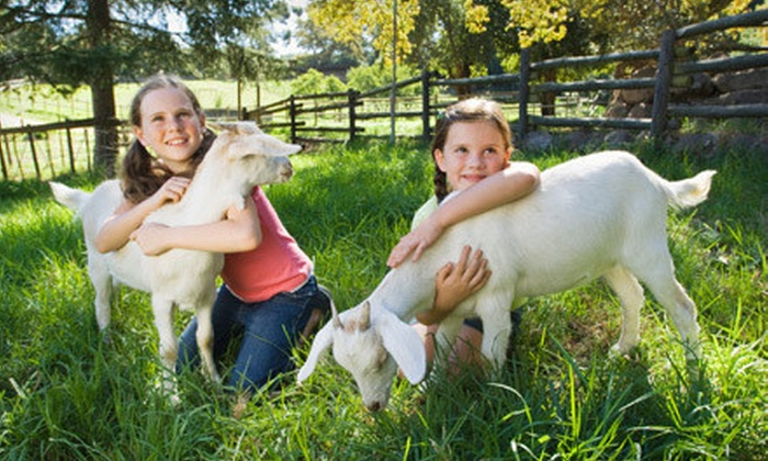 Green Meadows Farm - Green Meadows Farm: Petting-Farm Visit for One or Two at Green Meadows Farm (Up to Half Off)