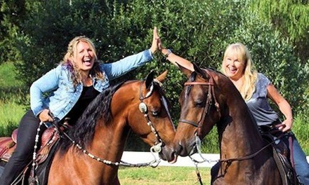 Up to 60% Off Horseback Riding Lessons at Fire Run Farm