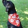 Holiday Doggie Bandanas (3-Pack)