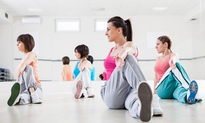 Motus Fit / Move Camp: Five Fitness Classes at Motus Fit (64% Off)