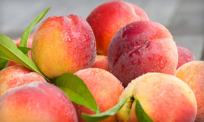 ProFarm Produce - Multiple Locations: 10-Pound Box of Peaches, Nectarines, and Apricots, or Apples and Pears from ProFarm Produce (Half Off)