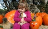 57% Off Petting-Zoo Pumpkin-Patch Visit