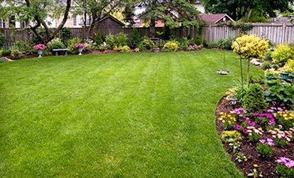 $25 for $50 Worth of <strong>Landscaping</strong> at Peach Landscape