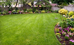 Peach Landscape: $25 for $50 Worth of Landscaping at Peach Landscape