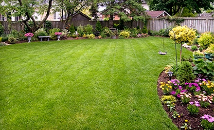 $25 for $50 Worth of Landscaping at Peach Landscape