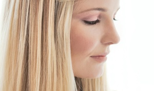 Linda Nessmiller Studio: Haircut Package with Style and Optional Partial Highlights at Linda Nessmiller Studio (Up to 54% Off)