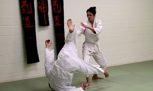 NOLA Aikido: Up to 65% Off Martial Arts Classes  at NOLA Aikido