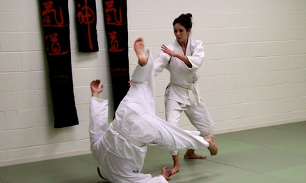 Up to 65% Off Martial Arts Classes  at NOLA Aikido