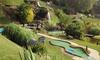 Tropical Gardens Mini Golf - Brucemont - Louisiana: $8 for Mini Golf for Two at Tropical Gardens Miniature Golf ($14 Value)