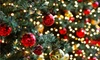 MD Resort Bed and Breakfast - Fort Worth: Holiday Fun Day for One, Two, or Four with Holiday Pictures and S'mores at MD Resort Bed and Breakfast (Up to 54% Off)