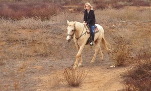 90-minute Guided Horseback-riding Tour With Wine Tasting For One Or Two From Susie Q Ranch (up To 53% Off)