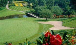 Druids Glen Golf Course (IE): 18 Holes of Golf with Golf Balls and Pull Trolley for Two or Four at Druids Glen Course (Up to 41% Off)