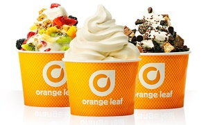 Frozen Yogurt At Orange Leaf (40% Off). Two Options Available.