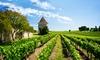 Ristorante Azienda Agricola Pietra Serena - Civitella Paganico: Giornata in fattoria con degustazione con eventuale pernotto all'Azienda Agricola Pietra Serena (sconto fino a 65%)