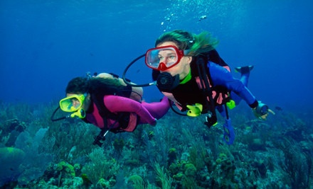 $129 for a PADI Open-Water Scuba-Certification from Tropical Adventures Scuba and Travel ($781 Value)