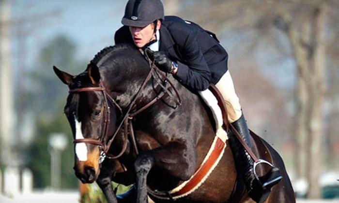 Oak Meadow Farm - East Windsor: $67 for a Three-Lesson Horseback-Riding Intro Package at Oak Meadow Farm in East Windsor ($135 Value)