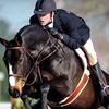 Half Off Horseback-Riding Lessons in East Windsor