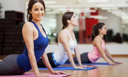 $20 for 30-Class Yoga and Fitness Pass from Yoga & Fitness Passport  ($300 Value)