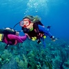 49% Off Scuba Pre-Certification Training Course