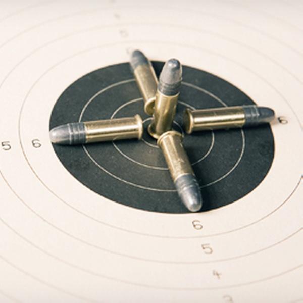 Tactical Firearms Training, LLC