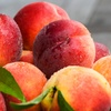 Up to 47% Off Peaches, Nectarines, or Apricots
