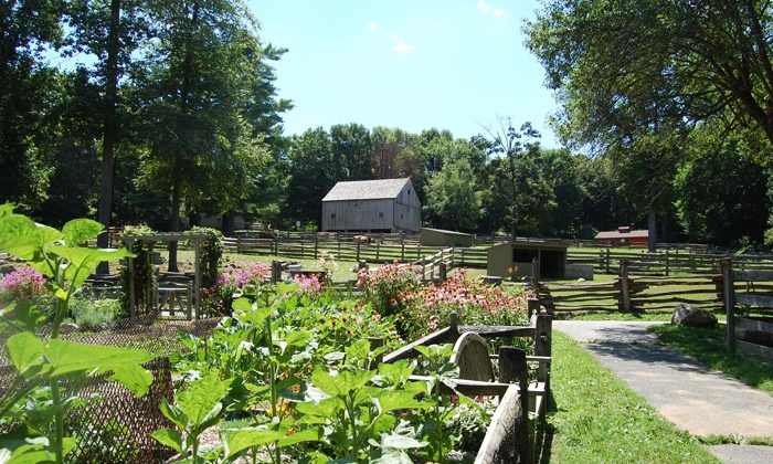 Stamford Museum & Nature Center - Stamford: Family-Plus Membership or a Family Membership to Stamford Museum & Nature Center (Up to 49% Off)