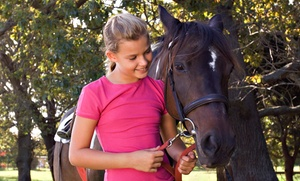Equestrian Ridge Farm: Hour Horseback Lesson with Trail Riding & Optional Picnic for 1 or 2 at Equestrian Ridge Farm  (Up to 42% Off)