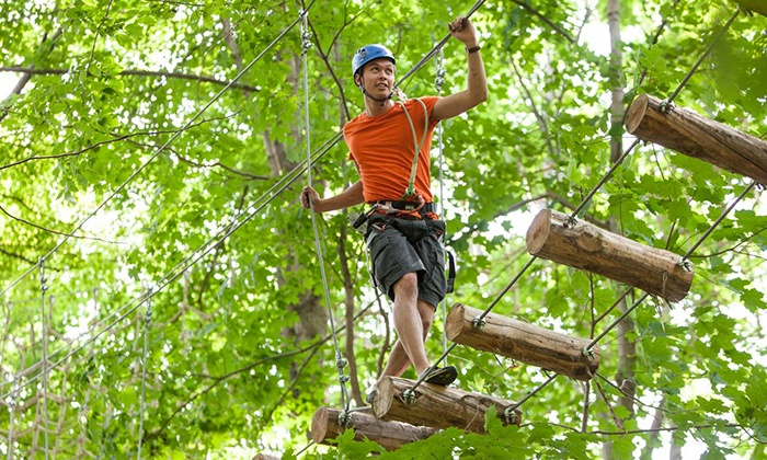 Treetop Trekking  - Multiple Locations: Three-Hour Zipline and Aerial Course for Two from Treetop Trekking (Up to 41% Off). Three Locations Available.