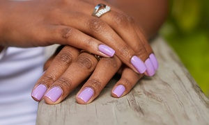 Sasha'z Nail Bar: Spa Mani-Pedis or Shellac Manicures at Sasha'z Nail Bar (Up to 56% Off). Four Options Available.