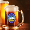 47% Off Tasting and Growler at Mount Shasta Brewing Company