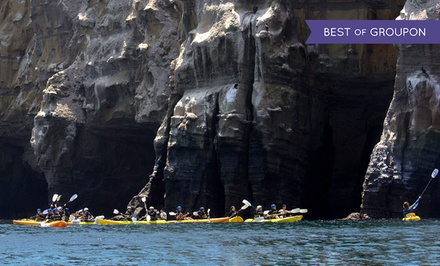 90-Minute Guided Sea-Cave Kayak Tour or Kayak and Snorkel Tour from Everyday California (Up to 58% Off)