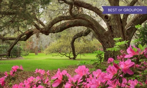 Magnolia Plantation & Gardens: Admission and Tours at Magnolia Plantation & Gardens (Up to 24% Off). Five Options Available.