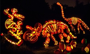 RISE of the Jack O'Lanterns: $18 for RISE of the Jack O'Lanterns at San Diego Zoo Safari Park (Up to $28 Value). 20 Date and Time Options Available.