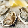 Half Off Upscale Seafood and Drinks at Fins Bistro