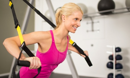 10 TRX Suspension-Training Classes or Two Months of Unlimited Classes for Two at Synergy Group Training (Up to 51% Off)